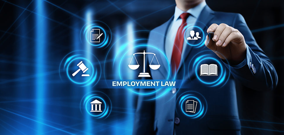Employment Law Legal Services Toronto