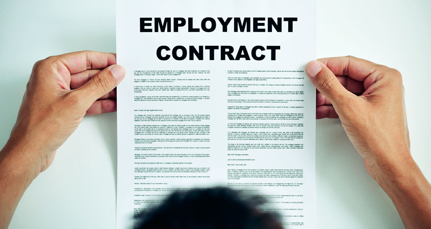 Review Employment Contract Toronto